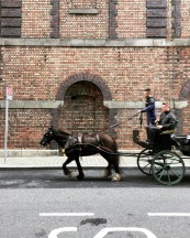 HorseandCarriage_Guinness
