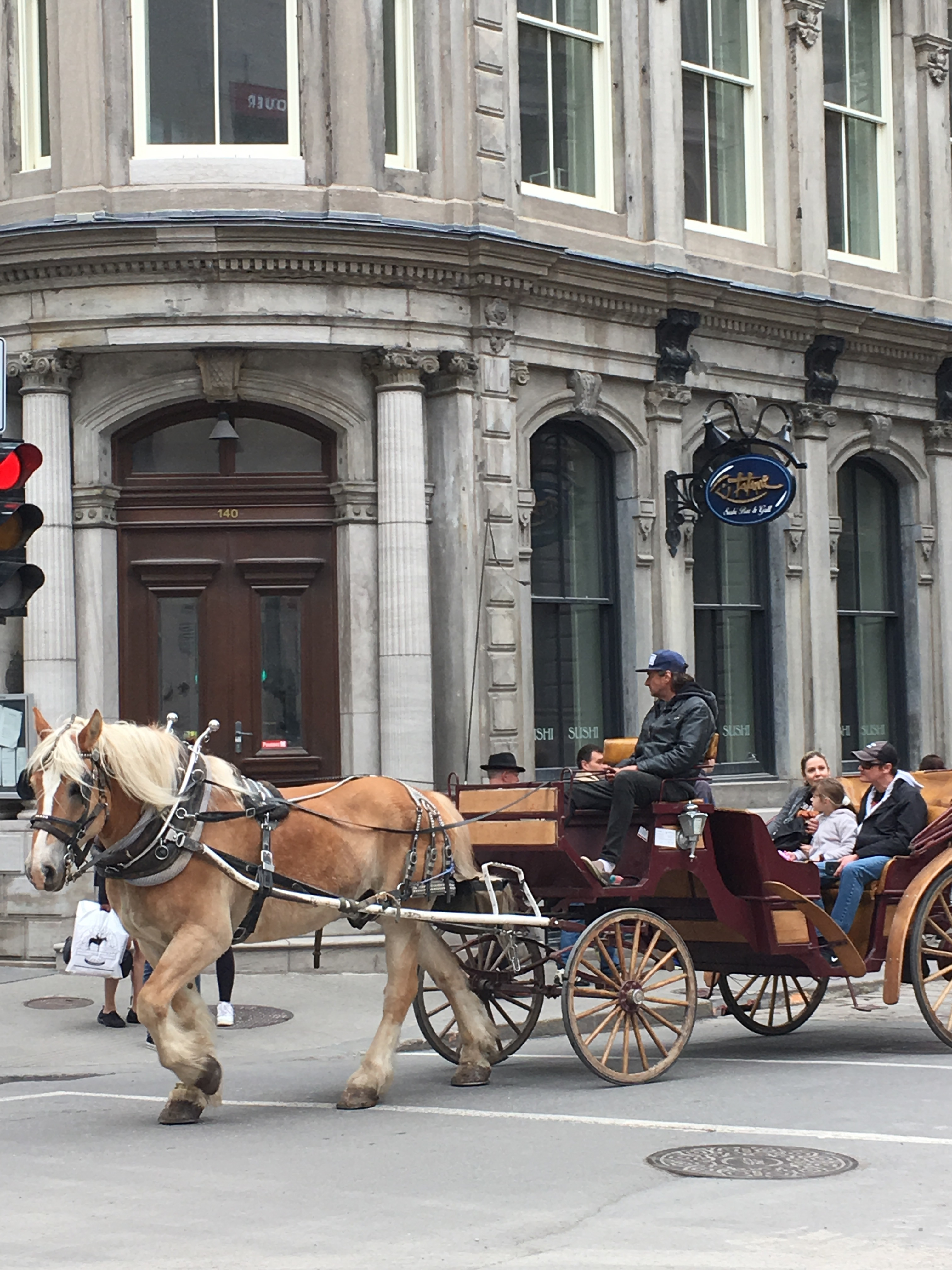 Horse and carriage rider in Old Montréal